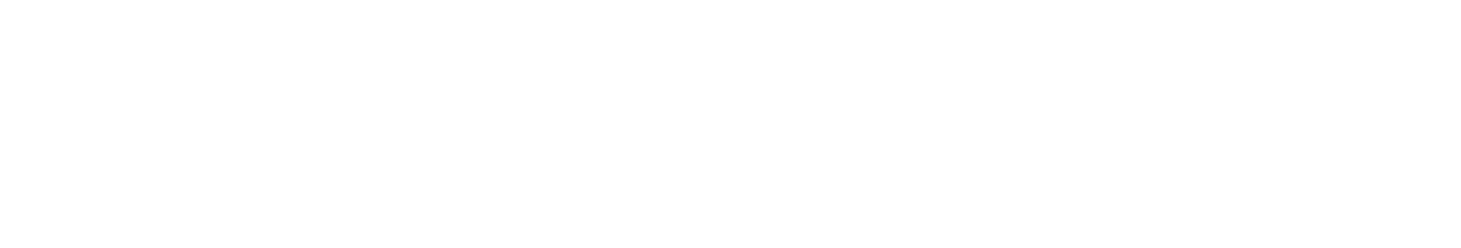 2CELLOS Logo